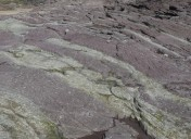 Polzeath Slate Formation – Colour in the Landscape